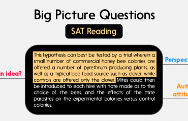 Dạng bài Big Picture Questions trong SAT Reading